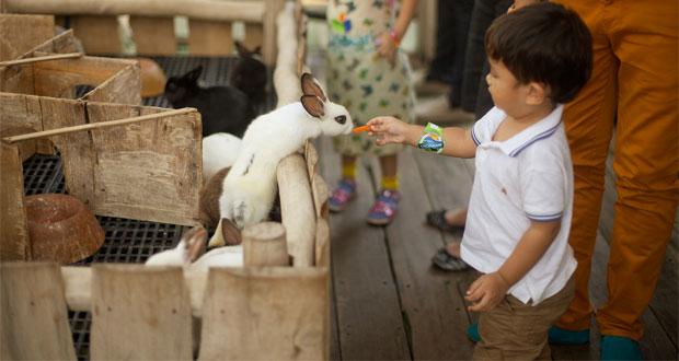21 Tempat Wisata Anak Di Bandung Yang Murah Dan Menarik